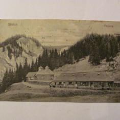 """GE - Ilustrata Sinaia """"Pestera"""" 1924"""