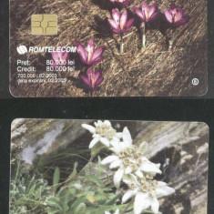 Romania 2003 Telephone card Flowers Rom 178a CT.032