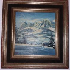 Tablou vechi - Muntii Fagaras -Iarna - ulei (78)