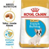 ROYAL CANIN BULLDOG FRANȚUZESC JUNIOR - 3 kg