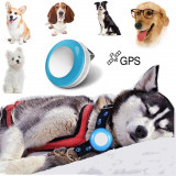 GPS urmarire caine pisica iepure
