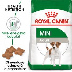 Royal Canin MINI Adult Hrana Uscata Caine foto
