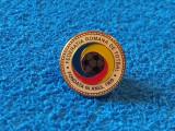 Insigna fotbal - Federatia de Fotbal din ROMANIA