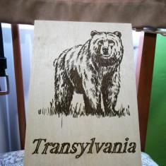 Imagine gravată Transilvania personalizate