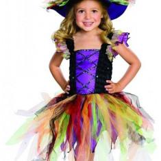 Costum de carnaval - VRAJITOAREA CURCUBEULUI PlayLearn Toys