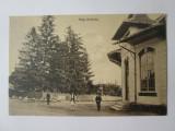 Cumpara ieftin Rara! Carte postala Piata Brebului(Prahova),necirculata cca.1915, Circulata, Printata
