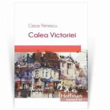 Calea Victoriei/Cezar Petrescu