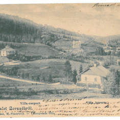 204 - BORSEC, Harghita, Litho, Romania - old postcard - used - 1902, Circulata, Printata