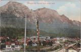 BUSTENI - Vedere spre Valea Alba, Editura Ad. Maier & D. Stern, circulata, Fotografie