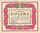 Diploma elev Dinamo Brasov 1975 Miercurea Ciuc Harghita perioada comunista