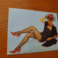 Calendar de buzunar din anul 1990