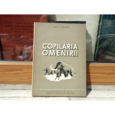 COPILARIA OMENIRII , V. K. NICOLSCHI 1952