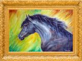 Acuarela studiu cal ( tablouri tablou picturi pictura grafica decor )