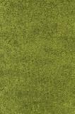 Cumpara ieftin Covor Shaggy Baldur, Verde, C03-200414, 120 x 170 cm, Dcro
