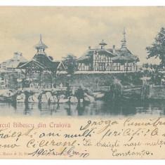 344 - CRAIOVA, Romania, Park Bibescu - old postcard - used - 1907, Circulata, Printata