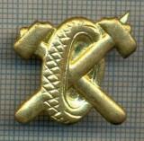 Y 1831 INSIGNA - MILITARA -SEMN DE ARMA - AUTO  -PENTRU COLECTIONARI