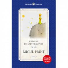 Micul Print - Antoine De Saint-Exupery , ed 2018