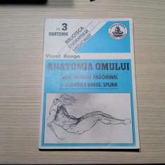 ANATOMIA OMULUI * Tubul Digestiv Abdominal. Splina ( Nr.3) - Viorel Ranga - 187p