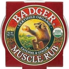 Mini balsam masaj dureri musculare cu ardei Cayenne si ghimbir, Badger21 g