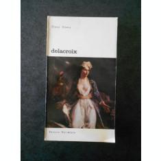 ELENA VIANU - DELACROIX