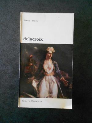 ELENA VIANU - DELACROIX foto