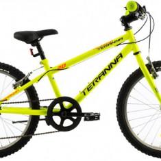Bicicleta Copii DHS Junior Teranna 2021 Verde 20