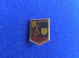 Insignă pionieri - Insignă România - Pionier Interpret (fond verde inchis)