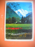 HOPCT 64371  INTERLAKEN  -AUSTRIA-STAMPILOGRAFIE-CIRCULATA