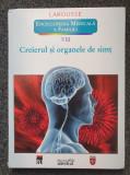 ENCICLOPEDIA MEDICALA A FAMILIEI. CREIERUL SI ORGANELE DE SIMT (vol. VIII)