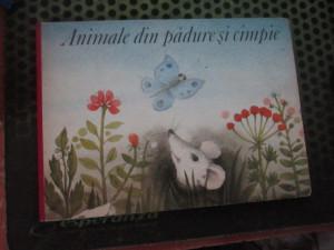 animale din padure si campie h6