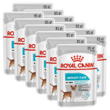 Cumpara ieftin Royal Canin Dermacomfort Dog Loaf pliculeț cu pate pentru câini cu probleme de rinichi 12 x 85 g