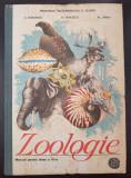 BIOLOGIE (ZOOLOGIE) MANUAL PENTRU CLASA A VI-A - Bogoescu, Stoicescu, Dabija