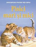 Pisici mari si mici