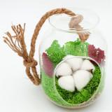 Terariu cu licheni naturali stabilizati, floare de bumbac si flori de orez, Nordic Zen