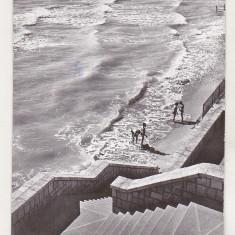 bnk cp Eforie Nord - La plaja - circulata