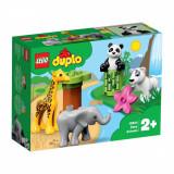 LEGO® DUPLO® Town - Pui de animale (10904)