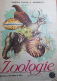"manual "" zoologie "" pt clasa a 6-a din anul 1989"