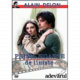 Alain Delon: Prima noapte de liniste / La prima notte di quiete - DVD Mania Film