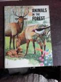 ANIMAL IN THE FOREST, CARTE PENTRU COPII, INLIMBA ENGLEZA