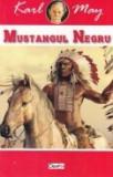Winnetou, vol. 5 -Mustangul Negru