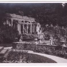 SINAIA-PARCUL PALATULUI-CARTE POSTALA ANII 30