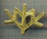 Y 1808 INSIGNA - MILITARA -SEMN DE ARMA -VANATORI DE MUNTE  -PENTRU COLECTIONARI