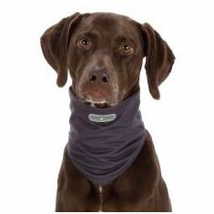 Eșarfă repellentă pentru câini M, gri