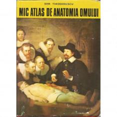 Mic atlas de anatomia omului - Dem. Theodorescu