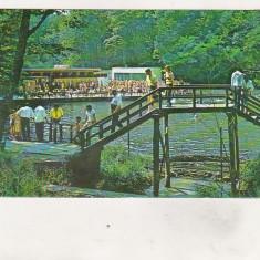 Bnk cp Sovata - Lacul Alunis - necirculata, Printata