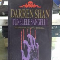 TUNELELE SANGELUI - DARREN SHAN