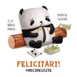 Mini-felicitare - Mici reusite - Panda | ROD
