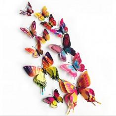 Fluturi 3D magnet, dubli, decoratiuni casa, evenimente, 12 bucati, colorati, A27
