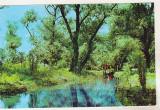 Bnk cp Delta Dunarii - Canalul Murighiol - necirculata, Printata