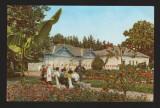 "CPIB 17903 CARTE POSTALA - ORADEA - BAILE ""VICTORIA"". VEDERE DIN PARC, RPR, Necirculata, Fotografie"